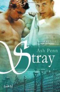 stray-ash-penn-paperback-cover-art
